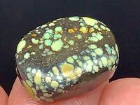 20CT 100% Natural Damele Polychrome Spiderweb Turquoise Cabochon
