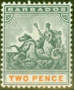 Barbados 1899 2d Schiefer-Schwarz & Orange SG108 Fein MTD Postfrisch