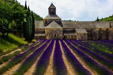 """Lavender field art photography Provence France 8"""" x 10"""" print  FREE SHIPPING"""