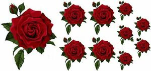 Painted  Rose Flower Decals Stickers Graphics Nursery Wall Window Decoration Art