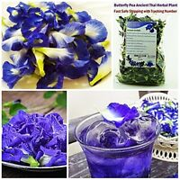 Thai Dried Butterfly Pea Tea PURE Flower Natural Organic Herbal Drink