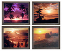 Grand Teton Snake River Ocean Sunset Palm tree 8x10 4 Set Framed Wall Decor Art