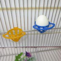 Parrot Feeder Basket Egg Mini Vegetable Fruit Feeding Bird Container Cage Supply
