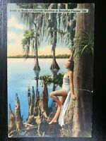 Vintage Postcard>1942>Study in Knees>Cypress Garden>Winter Haven>Florida