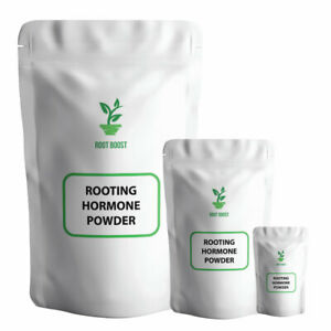 Rooting Powder With Compound Growth Hormone for Plant Cuttings & Hydroponics