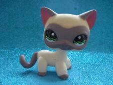 ORIGINAL Littlest Pet Shop  Short Hair Cat  # 1116 Shipping with Polish