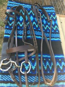 Tredstep Flat English Bridle with Myler Bit and breastplate