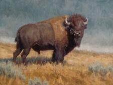 The Plainsman Ryan Skidmore Bison Buffalo Wildlife Animals Ltd Ed. Signed 18x24