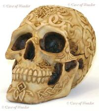 NEMESIS NOW KELTOI CELTIC SKULL MONEYBOX Gotihic/Occult/FantasyHorror/Skeleton