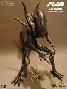 ALIEN WARRIOR SPECIAL EDITION EXCLUSIVE HOT TOYS 1/6 FIGURE SIDESHOW PREDATOR VS