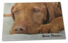 Hungarian Vizsla 'Yours Forever' Extra Large Toughened Glass Cutting, AD-V3yGCBL