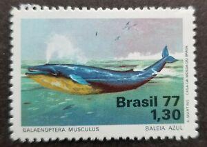 [SJ] Brazil Environment Protection Blue Whale 1977 Ocean Marine Life (stamp) MNH