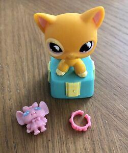 Littlest Pet Shop Authentic Shorthair Cat #855 Purple Moon Eyes with accessories