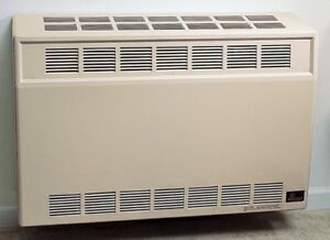 Empire DV-25-SGLP Direct Vent Propane Heater