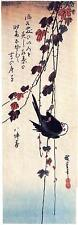 Hiroshige, Birds & Botanical. Black Bird Clinging to Ivy, Asian style 1988 print