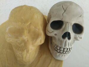 Latex mold of skull