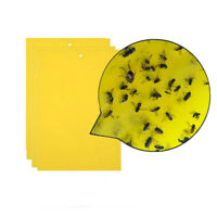 3Pcs Strong Flies Traps Bugs Sticky Board Catching Aphid Insects Pest Killer