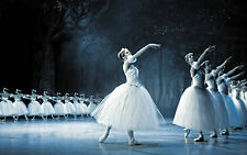 STUNNING BALLET DANCERS CANVAS PICTURE #314 QUALITY BALLERINA CANVAS SWAN LAKE