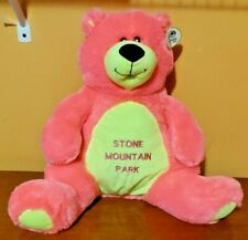 Vintage Neon Pink Green Teddy Bear STONE MOUNTAIN PARK Plush Stuffed Animal Toy