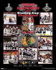 Chicago Blackhawks 2010 Stanley Cup Championship Picture Plaque