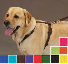 Nylon Dog Harness, USA Seller, 11 Colors 4 Sizes! Easy to Use Adjustable Puppy