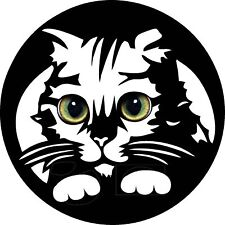 "qty2 REAL EYES CAT Vinyl USA DECAL For cars trucks suvs window walls  6""x6"""