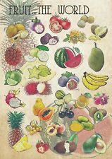 Owoce świata - dekoracyjny plakat A2 + plakat GRATIS + darmowa wysyłka!