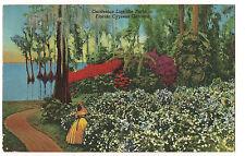 FLORIDA CYPRESS GARDENS Gardenias USED POSTCARD Vintage FREE SHIP Linen