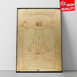 Leonardo Da Vinci's Vitruvian Man Vintage Painting Poster   A5 A4 A3 A2 A1  