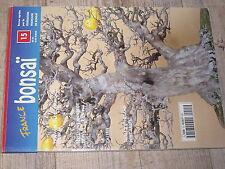 ¤¤ France Bonsaï n°15 Former mon arbre Plante sur pierre TAILLE Travail bois mor