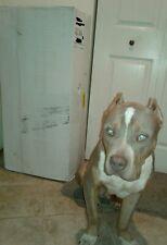 Buddyrest.com DIVINITY BOLSTER MEMORY FOAM DOG BED, XL, CHAPAGNE, NEW UNOPENED