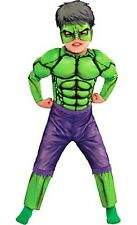 The Avengers Incredible Hulk Toddler Costume 3T - 4T Marvel Comics Brand New 277