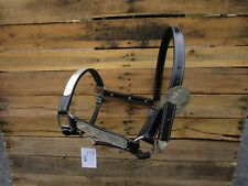LEATHER SHOW HALTER WESTERN HORSE BLACK LEATHER TRIM SILVER FITTING TRAIL TACK