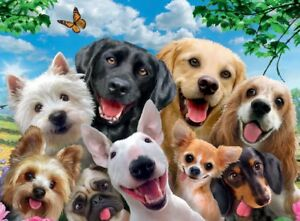 Animal Dog Puzzles 1000 Pieces Lot Jigsaw  Educational Adults Toys 75X50cm NEW