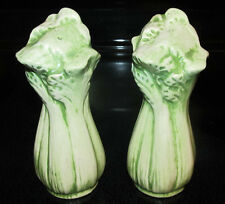 Asparagus or Celery Salt & Pepper Shakers Set Vegetables Veggies Country Kitchen