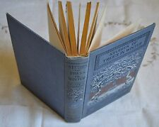 STUDIES OF TREES WINTER ANNIE OAKES HUNTINGTON ED  KNIGT AND MILLET 1902 BE