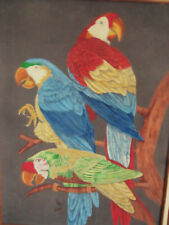 FINE FRAMED OIL PORTRAIT ON SUEDE THREE MACAW PARROTS SINGED J.B 1980