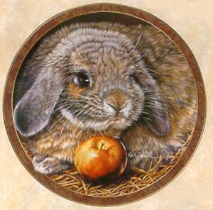 Bunny Tales Collection, by Vivi Crandall, Bradford Exchange Plate Apple Dumpling