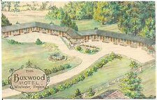 Boxwood Motel in Winchester VA Artist Walter Bowers Postcard