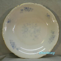 Vtg Mitterteich Bavaria Germany RHAPSODY IN BLUE Coupe Soup Bowl Salad Plate 8""