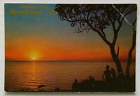 Greetings From Mornington Vic Sunset on the Beach Rose No.651 Postcard (P322)