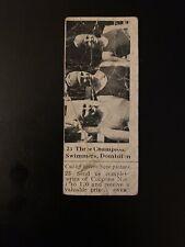 1925 V31 Canadian Dominion Chocolate Kessler/Korgate/Kirkpatrick (Swimming)