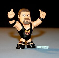 WWE Series 2 Funko Mystery Minis Vinyl Figures Kevin Nash