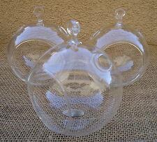 "3 Pack-4.5"" Glass Plant Orb/Terrariums"