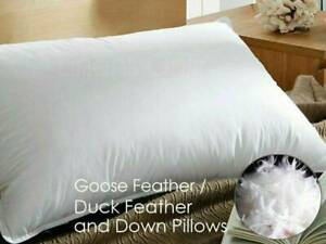 Goose Feather and Down Pillows Pillow Luxury Hotel Quality PACK of 1, 2 & 4