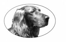 """4""""X6 Irish Setter static cling etched glass decal"""