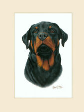 Original Rottweiler Painting by Robert J. May