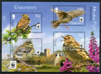 Guernsey 2017 MNH Meadow Pipit WWF Endangered Species 4v M/S Birds Stamps