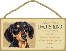 Advice From A DACHSHUND Black and Tan Dog Head 5 x 10 Wood SIGN Plaque USA Made