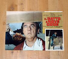 IL GATTO A NOVE CODE fotobusta poster Dario Argento Malden The Cat o Nine Tails
